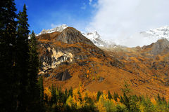 The autumn beauty of Four Girls Mountain. Four Girls Mountain is reputed as the Oriental Alps, located in Xiaojin County of Aba Tibetan and Qiang Autonomous Royalty Free Stock Photography