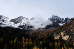 The autumn beauty of Four Girls Mountain. Four Girls Mountain is reputed as the Oriental Alps, located in Xiaojin County of Aba Tibetan and Qiang Autonomous Stock Images