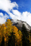The autumn beauty of Four Girls Mountain. Four Girls Mountain is reputed as the Oriental Alps, located in Xiaojin County of Aba Tibetan and Qiang Autonomous Stock Photos