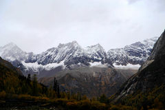 The autumn beauty of Four Girls Mountain. Four Girls Mountain is reputed as the Oriental Alps, located in Xiaojin County of Aba Tibetan and Qiang Autonomous Stock Image