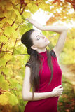 Autumn beauty woman portrait Royalty Free Stock Photography