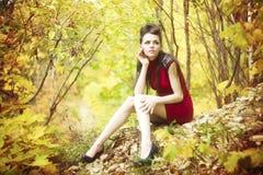 Autumn beauty woman portrait Stock Image