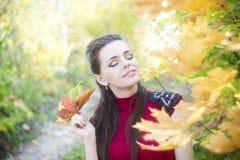 Autumn beauty woman portrait Stock Photos