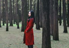 Autumn beauty,Young woman with autumn forest. Image showing beautiful young female standing in autumn forest Stock Photo