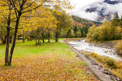Autumn on a bed of dry leaves looking mountain landscape Stock Photos