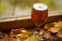 Autumn beer glass Royalty Free Stock Photos