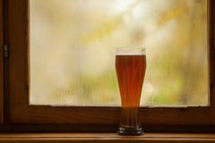 Autumn beer glass Royalty Free Stock Photography