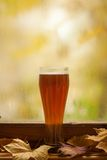 Autumn beer glass Royalty Free Stock Photo