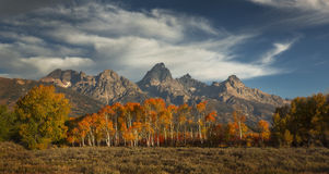 Autumn Below the Tetons Royalty Free Stock Image