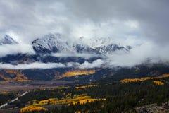Autumn Below Winter sur la crête du bâti Elbert Coloroado photographie stock libre de droits
