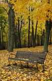 Autumn Bench Royalty Free Stock Image