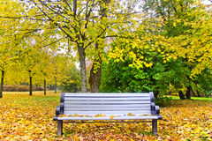 Autumn bench. Surrounded by leaves Stock Photos
