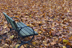 Autumn Bench. Surrounded by colourful leaves Stock Image