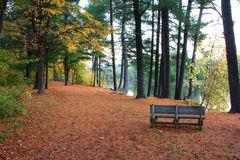 Autumn Bench Royalty Free Stock Photo