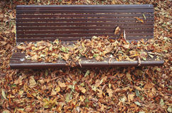 Autumn. Bench and fallen leaves. Royalty Free Stock Photography