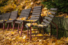 Autumn bench Royalty Free Stock Images