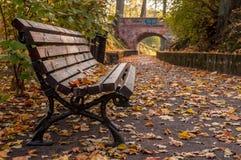 Autumn bench and path to the bridge Stock Photo