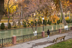Autumn bench on a river bank Royalty Free Stock Photography