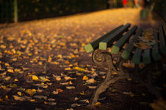 Autumn bench in the Summer garden in Saint-Petersburg Stock Photos