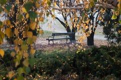 Autumn bench Stock Photo