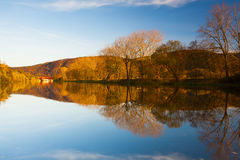 Autumn on the Berounka river Stock Image
