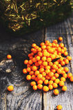 Autumn berry - fresh buckthorn on wooden background. Autumn berries - fresh buckthorn on wooden background Royalty Free Stock Photography