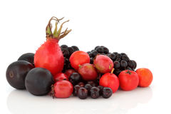Autumn Berry Fruit Selection Stock Photos