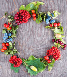 Autumn berry wreath. On old dark wooden background royalty free stock images