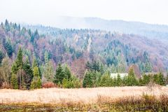 Autumn Beskid mountain forest background, Poland Royalty Free Stock Photo