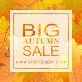 Autumn big sale banner for use in printing, posters, invitations. Web design and more. Vector illustration Stock Image