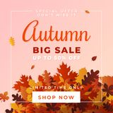 Autumn big sale vector illustration. A pile of dry leaves background, up to 50% off text. Fall discount online shop banner, flyer, poster, card, label design Stock Illustration