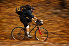 Autumn bike panning Royalty Free Stock Image