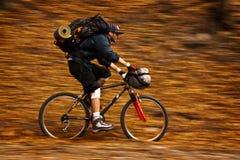 Autumn bike panning Royalty Free Stock Image