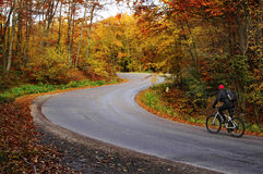 Autumn bike riding. Man riding a bike on a curved road in autumn scenary Royalty Free Stock Photography