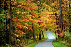 Autumn bike trail Royalty Free Stock Photo