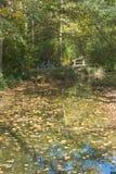 Autumn Bike Trip Imagen de archivo