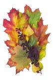 Autumn billbard concept Royalty Free Stock Image