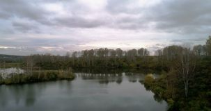 Autumn birch forest and the river view from the air stock video footage
