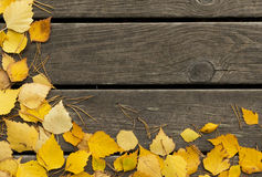 Autumn  birch leaves and pine needles on a wooden background Royalty Free Stock Photos