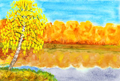 Autumn, birch near lake, painting Stock Photography
