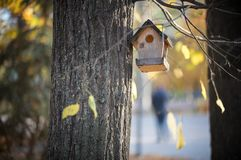Birdhouse hanging on a tree in the autumn park royalty free stock photography