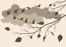 Autumn. birds fly south. Autumn landscape with the latest falling leaves and birds flying south Stock Photos