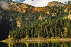 Autumn Black Lake, parque nacional de Durmitor, Zabljak, Montenegro Fotos de archivo
