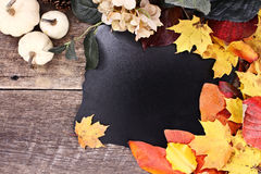 Autumn Blackboard Royalty Free Stock Images