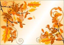 Autumn blank Stock Image