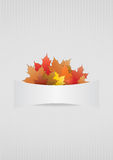 Autumn blank Stock Photography