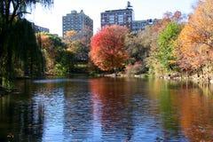 autumn bliskim nowy York park Zdjęcia Stock