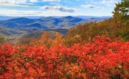 Autumn Blue Ridge Mountains North Carolina Royalty Free Stock Image