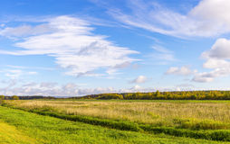 Autumn blue sky and field panorama Royalty Free Stock Image