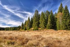 Autumn blue sky,  meadows and woods Stock Photos